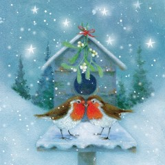 Kissing Robins Christmas Card